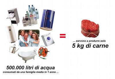 litri d'acqua vs. carne